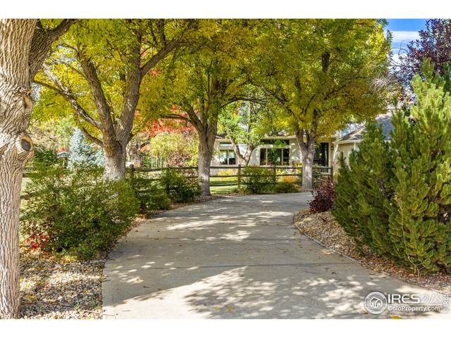 6491 Bluebird Ave, Longmont, CO 80503 (#954057) :: James Crocker Team