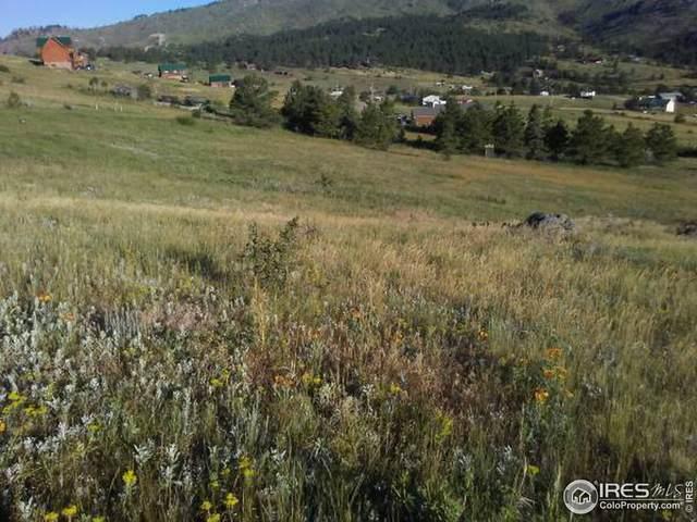 1730 Palisade Mountain Dr, Drake, CO 80515 (MLS #876357) :: J2 Real Estate Group at Remax Alliance