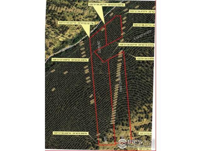 Van Eden Rd-Ontario Mine, Idaho Springs, CO 80452 (MLS #897157) :: Bliss Realty Group