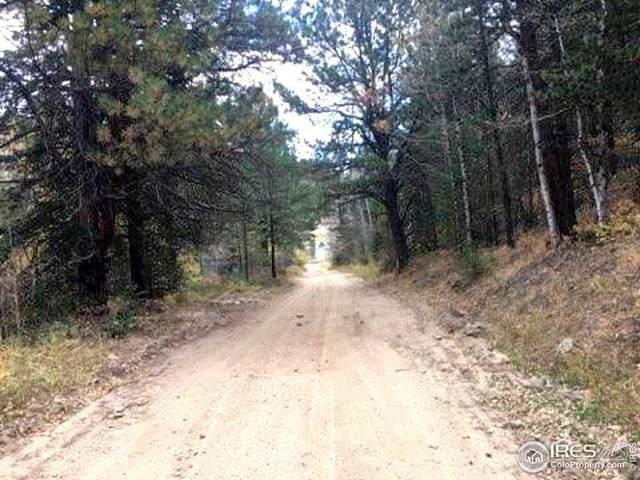 Van Eden Rd.-Humming Bird Mi, Idaho Springs, CO 80452 (MLS #897163) :: Bliss Realty Group