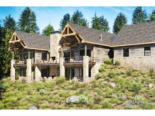 25 Ridge View Rd, Nederland, CO 80466 (#928949) :: Symbio Denver