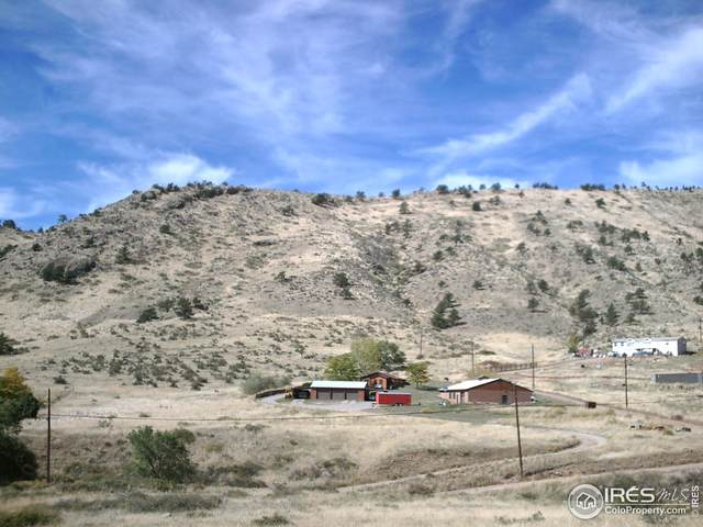 1115 Stone Canyon Rd, Lyons, CO 80540 (MLS #930453) :: Bliss Realty Group