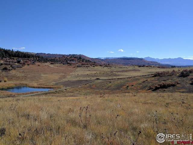919 Roush Dr, Pagosa Springs, CO 81147 (MLS #936555) :: Coldwell Banker Plains