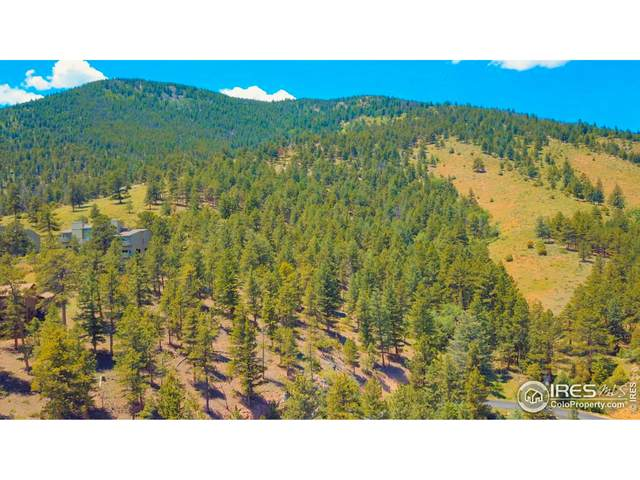 0 Char-Del Ln, Estes Park, CO 80517 (#940386) :: Symbio Denver