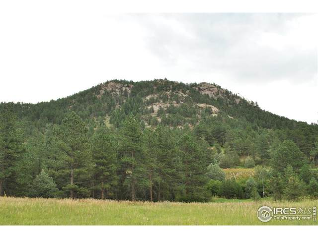 0 Highway 36, Lyons, CO 80540 (MLS #942429) :: You 1st Realty