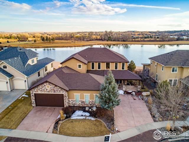 309 Habitat Bay, Windsor, CO 80550 (MLS #942833) :: J2 Real Estate Group at Remax Alliance