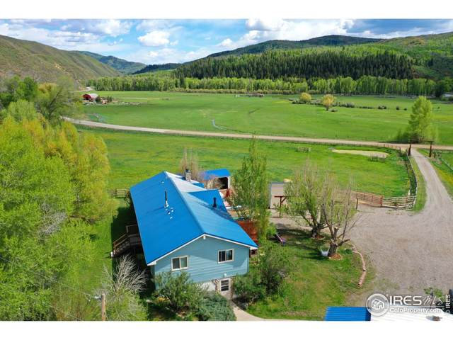 27320 County Road 52E, Steamboat Springs, CO 80487 (MLS #943225) :: Jenn Porter Group