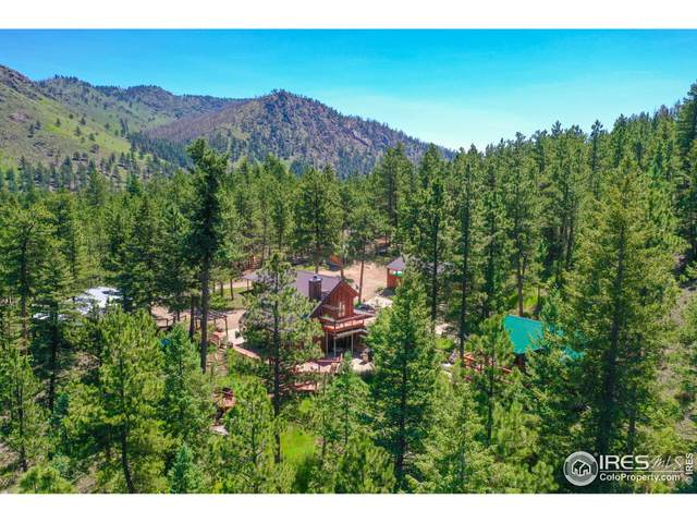 170 Chopp Ct, Bellvue, CO 80512 (MLS #943613) :: Downtown Real Estate Partners