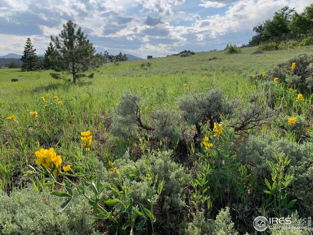 651 Navajo Rd, Red Feather Lakes, CO 80545 (MLS #943702) :: RE/MAX Alliance