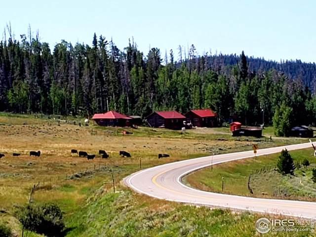 5218 Highway 127, Walden, CO 80480 (MLS #943796) :: RE/MAX Alliance