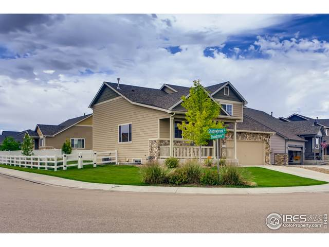 389 Shadowbrook Dr, Windsor, CO 80550 (MLS #944931) :: Tracy's Team