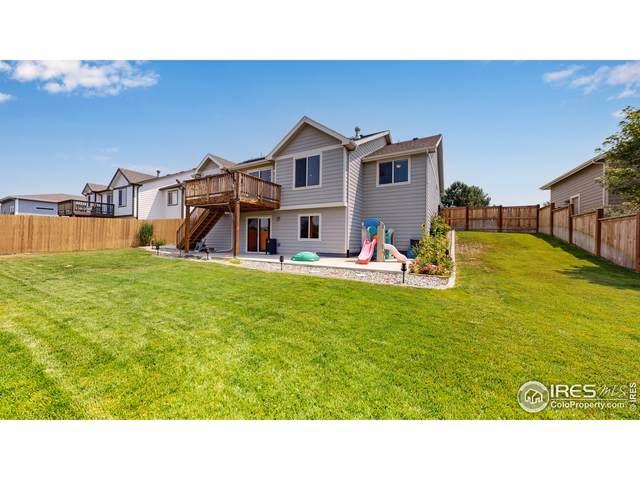 507 Prairie Clover Way, Severance, CO 80550 (#946497) :: Kimberly Austin Properties