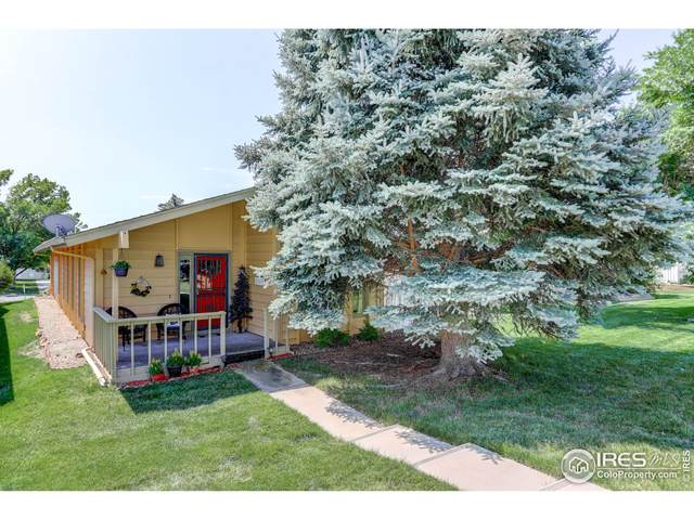 1 Ruth Rd, Broomfield, CO 80020 (MLS #946711) :: Downtown Real Estate Partners