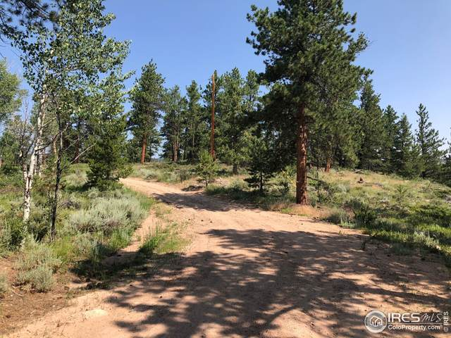 416 Comanche Cir, Red Feather Lakes, CO 80545 (MLS #946891) :: J2 Real Estate Group at Remax Alliance