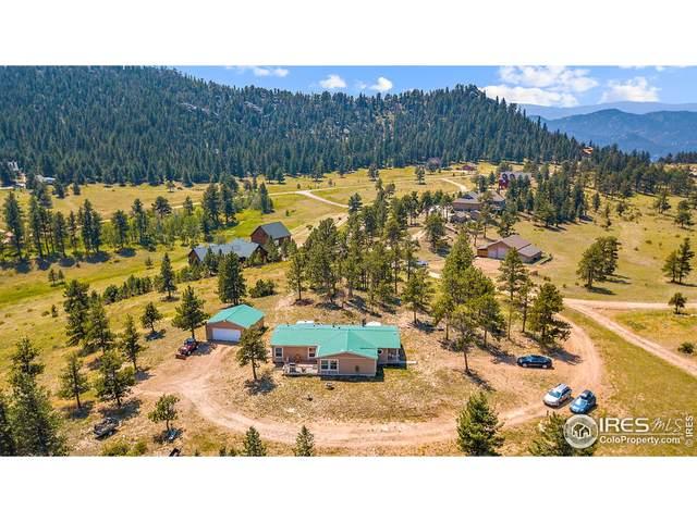 140 Deadhorse Mountain Ct, Livermore, CO 80536 (#948574) :: Symbio Denver