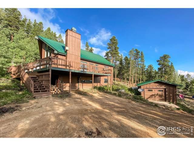 1030 Ski Rd, Allenspark, CO 80510 (MLS #949194) :: Find Colorado