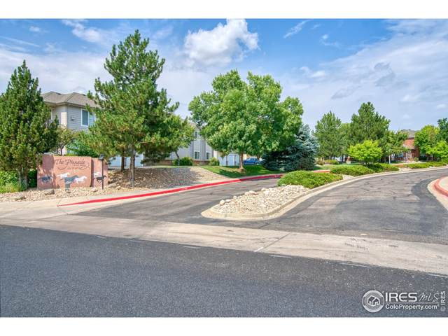 5151 29th St #405, Greeley, CO 80634 (MLS #949950) :: Downtown Real Estate Partners