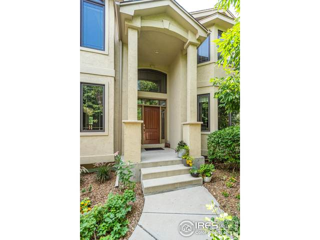 3633 Wild View Dr, Fort Collins, CO 80528 (MLS #950398) :: J2 Real Estate Group at Remax Alliance