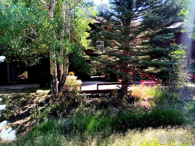 640 Macgregor Ave #10, Estes Park, CO 80517 (MLS #950679) :: Downtown Real Estate Partners