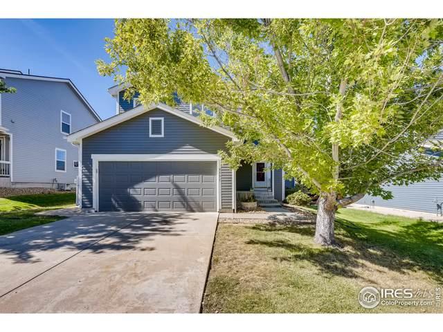 9551 Elk Mountain Cir, Littleton, CO 80125 (#951474) :: Symbio Denver