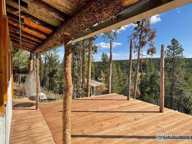 436 Reindeer Dr, Ward, CO 80481 (MLS #952401) :: Tracy's Team