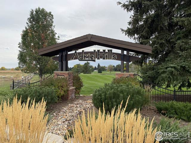 1901 Adriel Ct, Fort Collins, CO 80524 (MLS #952812) :: Tracy's Team