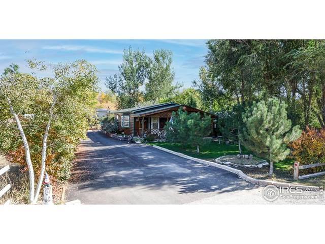 2920 Glade Rd, Loveland, CO 80538 (MLS #952878) :: Jenn Porter Group