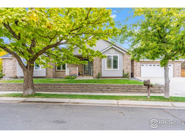 199 Paloma Ave, Brighton, CO 80601 (MLS #953806) :: Coldwell Banker Plains