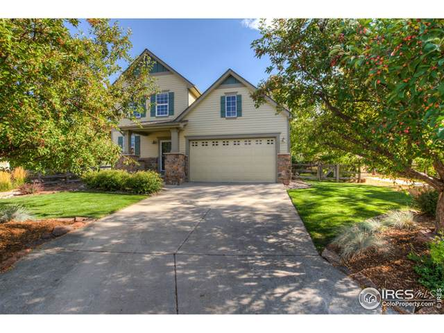 118 Estes Ct, Lyons, CO 80540 (MLS #953960) :: You 1st Realty