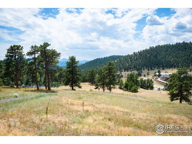 788 Deer Rest Rd, Evergreen, CO 80439 (MLS #918717) :: Coldwell Banker Plains