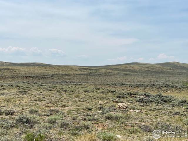 Antelope Dr, Walden, CO 80480 (MLS #933509) :: Tracy's Team