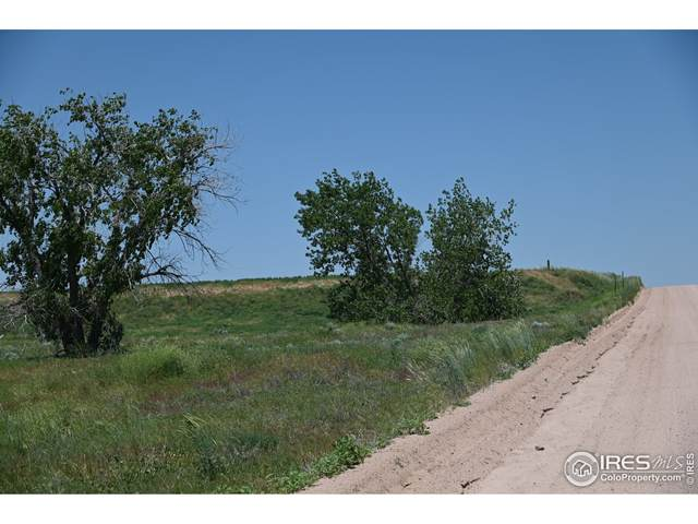 0 County Road 8, Wiggins, CO 80654 (MLS #934553) :: Downtown Real Estate Partners