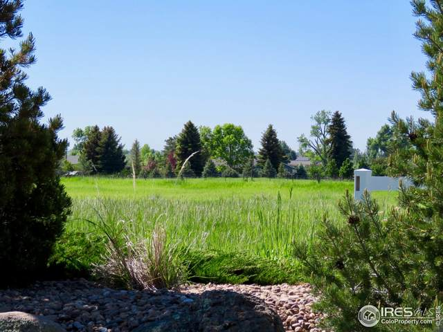 4523 Beverly Dr, Berthoud, CO 80513 (MLS #941224) :: Tracy's Team
