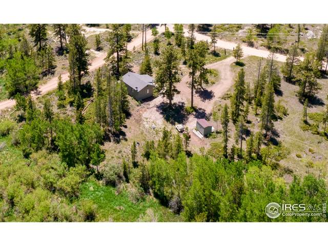 6753 Ottawa Way, Red Feather Lakes, CO 80545 (MLS #943010) :: RE/MAX Alliance
