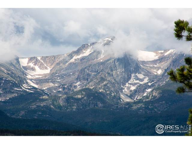 3125 Eiger Trl, Estes Park, CO 80517 (MLS #943703) :: Bliss Realty Group