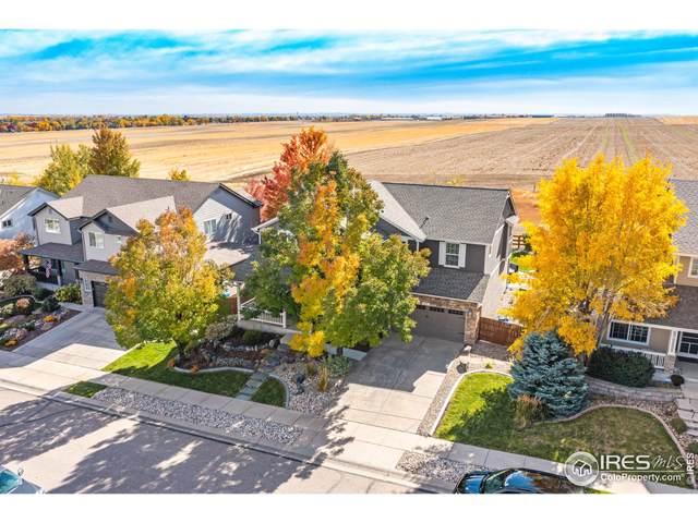 639 Stonington Ln, Fort Collins, CO 80525 (#953443) :: iHomes Colorado