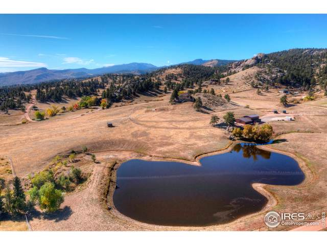 450 Lake Dr, Lyons, CO 80540 (MLS #954015) :: You 1st Realty