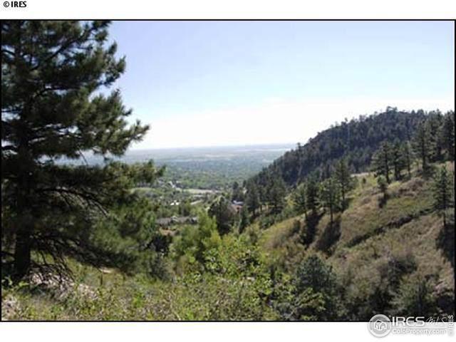 56 Beaver Way, Boulder, CO 80304 (MLS #870738) :: Tracy's Team