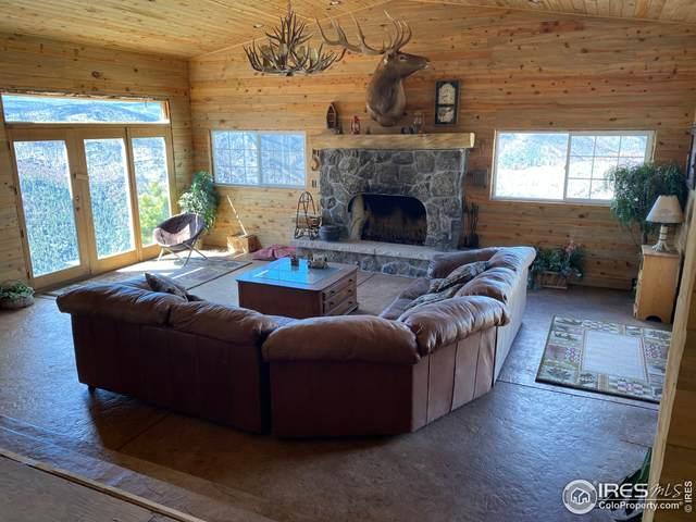 2507 Spencer Mountain Rd, Bellvue, CO 80512 (MLS #941223) :: Downtown Real Estate Partners