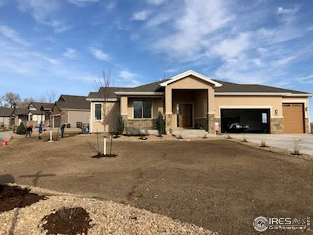 4243 Carroway Seed Ct, Johnstown, CO 80534 (MLS #901962) :: The Sam Biller Home Team