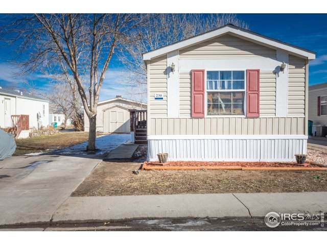 435 N 35th #230 Ave, Greeley, CO 80631 (#4227) :: The Margolis Team