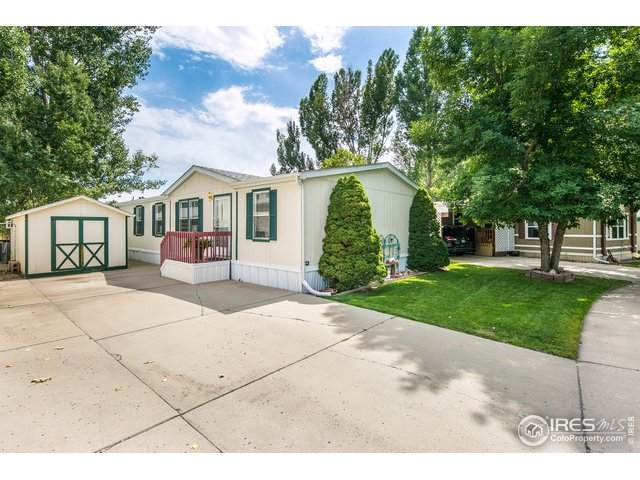 1210 Limestone Ave #101, Loveland, CO 80537 (MLS #4270) :: J2 Real Estate Group at Remax Alliance