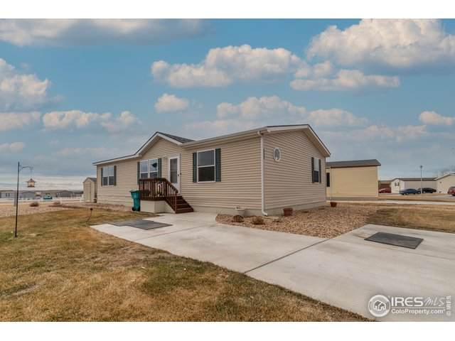 3062 Yarrow Cir #377, Evans, CO 80620 (MLS #4659) :: Jenn Porter Group
