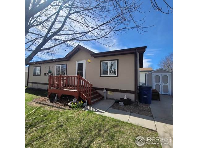3286 Mammoth, Longmont, CO 80504 (#4677) :: My Home Team