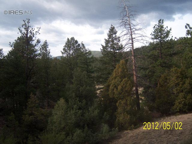 287 Pinyon Trl, Estes Park, CO 80517 (MLS #697061) :: 8z Real Estate