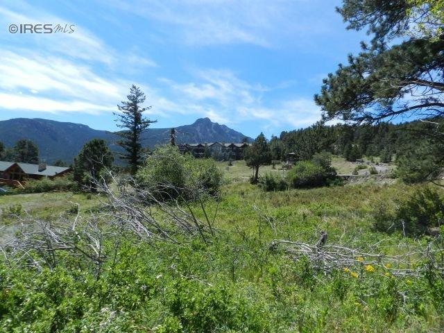 0 Sioux Ct, Estes Park, CO 80517 (MLS #716464) :: 8z Real Estate