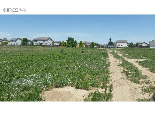 5579 Tipple Pkwy, Frederick, CO 80504 (MLS #740523) :: 8z Real Estate