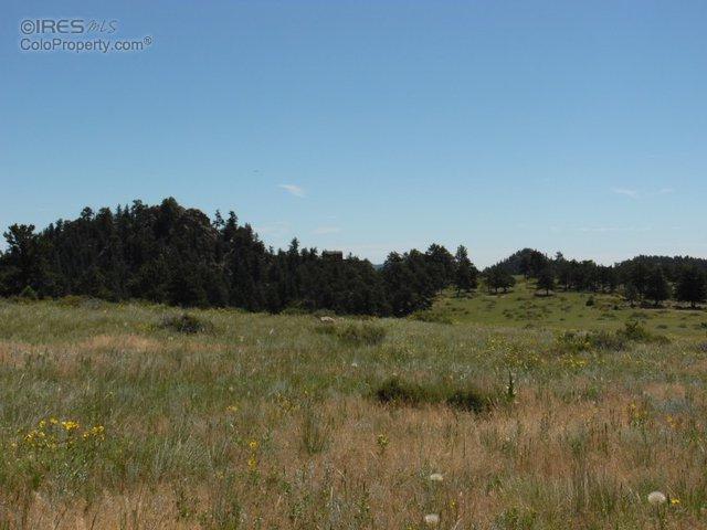 324 Drake Ranch Rd, Livermore, CO 80536 (MLS #770683) :: 8z Real Estate