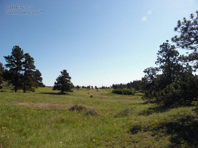 510 Drake Ranch Rd, Livermore, CO 80536 (MLS #770688) :: 8z Real Estate