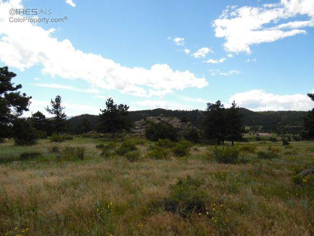 438 Drake Ranch Rd, Livermore, CO 80536 (MLS #770690) :: 8z Real Estate